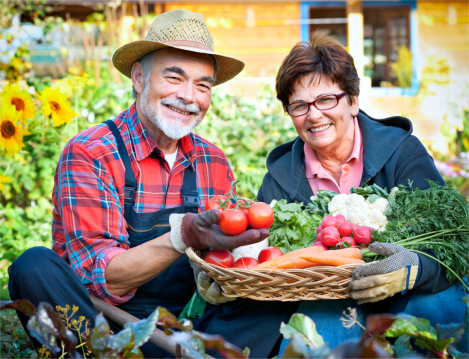 Health and Social Benefits of Gardening